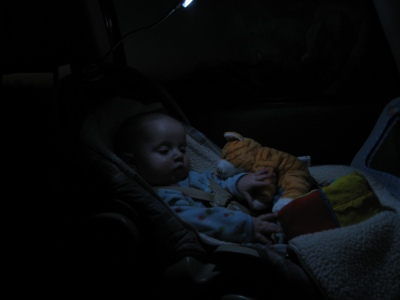 booklight-in-the-car