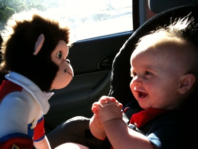 love the monkey