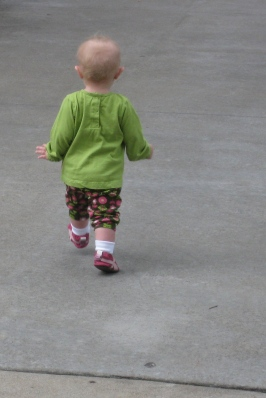 kivrin walking at the zoo