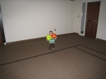 playing ball in thegym2